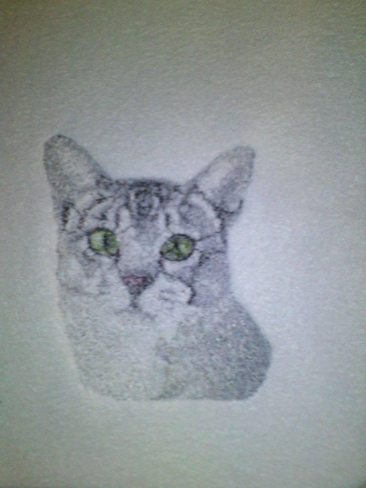 Embroidered Grey Home cat free design