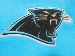 Carolina Panthers at dog's embroidered jacket.jpg