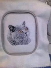 British Shorthair Cat embroidered