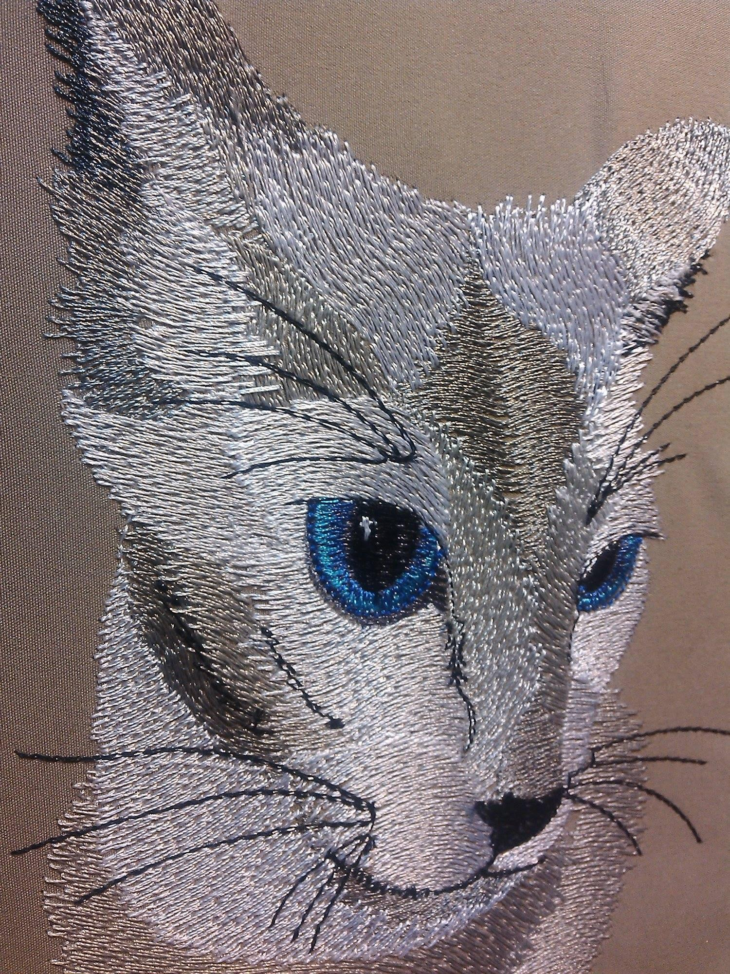 Closeup blue eyes cat free embroidery design