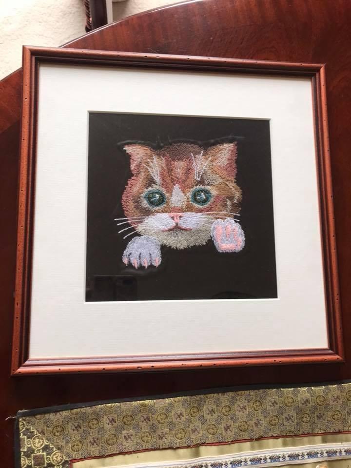 Framed Little kitten free embroidery design