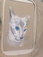 In hoop Blue eyes cat free embroidery design