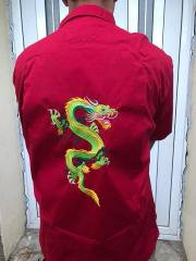 Embroidered shirt with oriental dragon free design