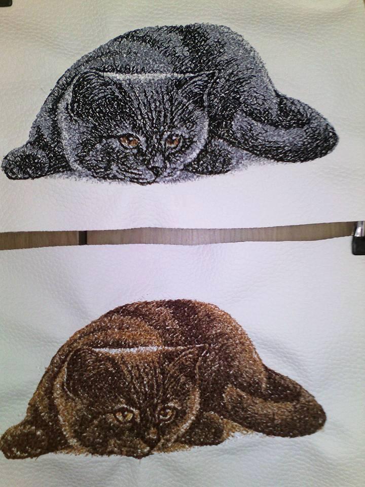British Cat free photo embroidery design