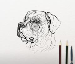 Sketch of Rottweiler design