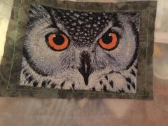 Owl photo stitch free embroidery