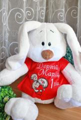Embroidered toy dress with Bunny design