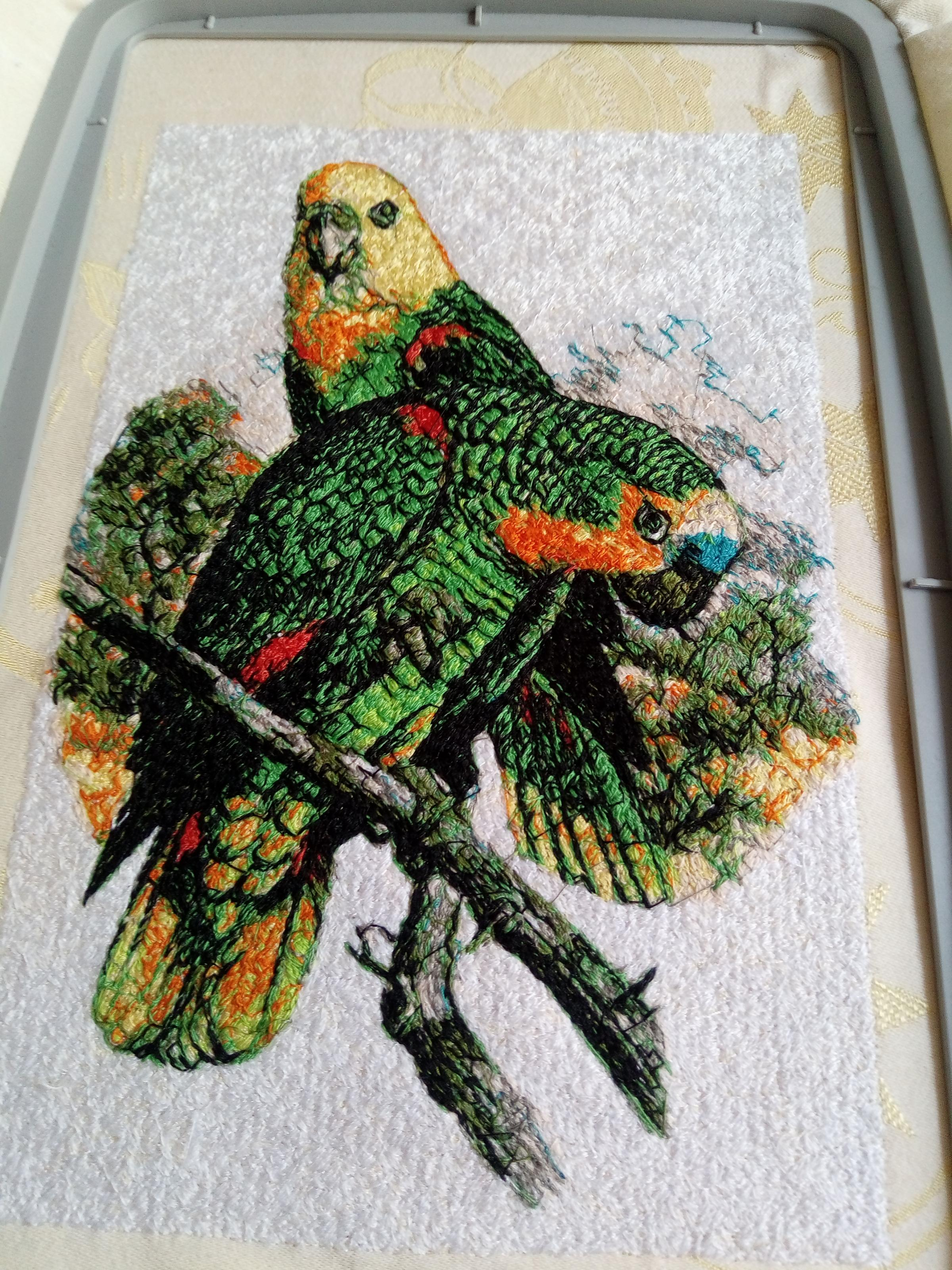 Couple of green parrots embroidery design