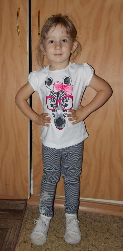 Embroidered t-shirt with Zebra free design