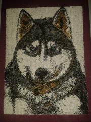 Blue eyes husky embroidery design