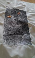 British cat photo stitch free embroidered design