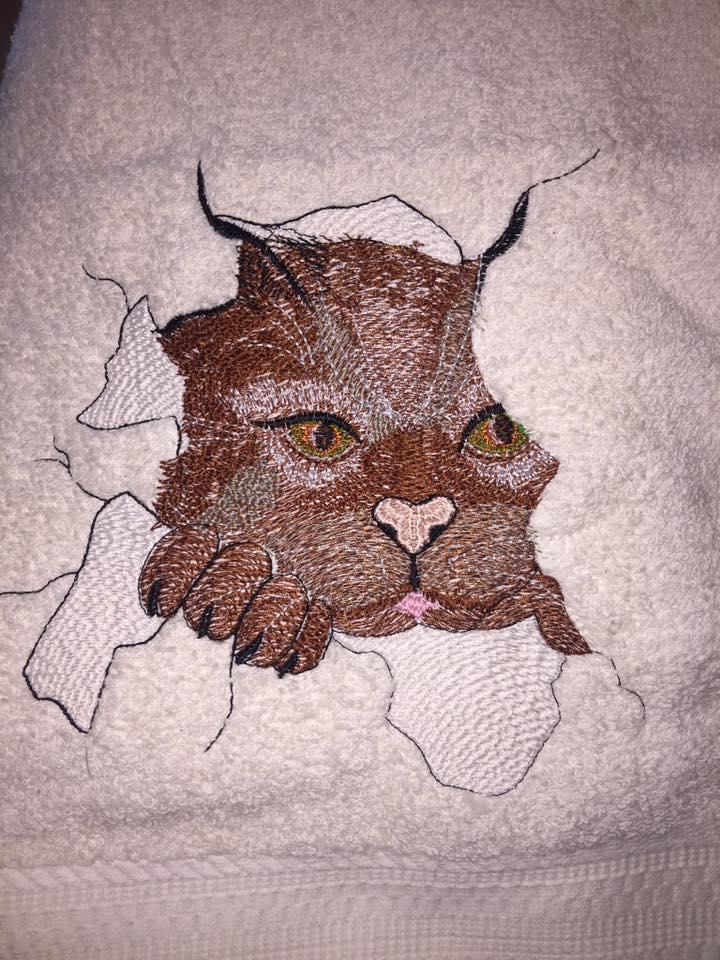 Angry cat embroidered free design