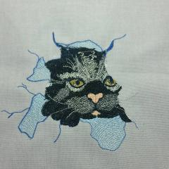 Angry cat free embroidery