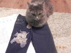 Jeans with angry cat free embroidery design