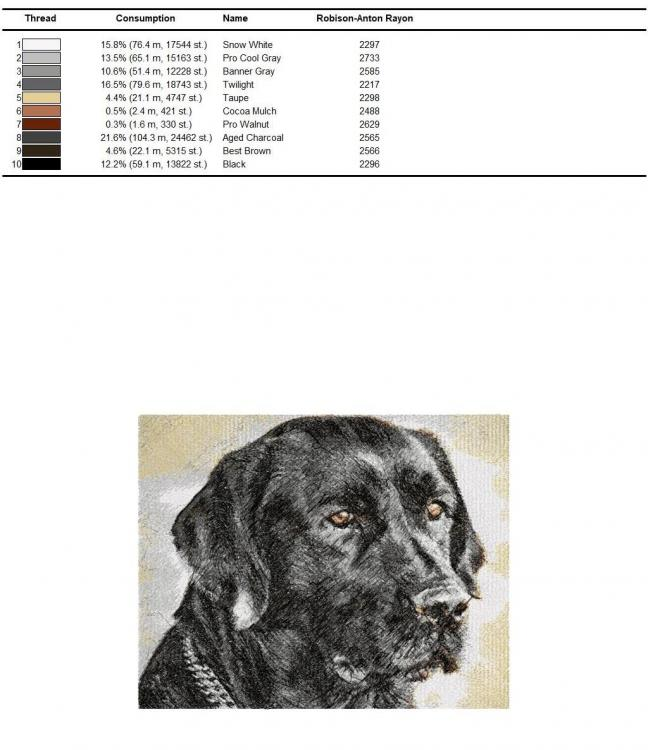 Color chart for black dog photo stitch free embroidery design