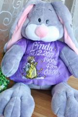 Embroidered toy dress with Angel design