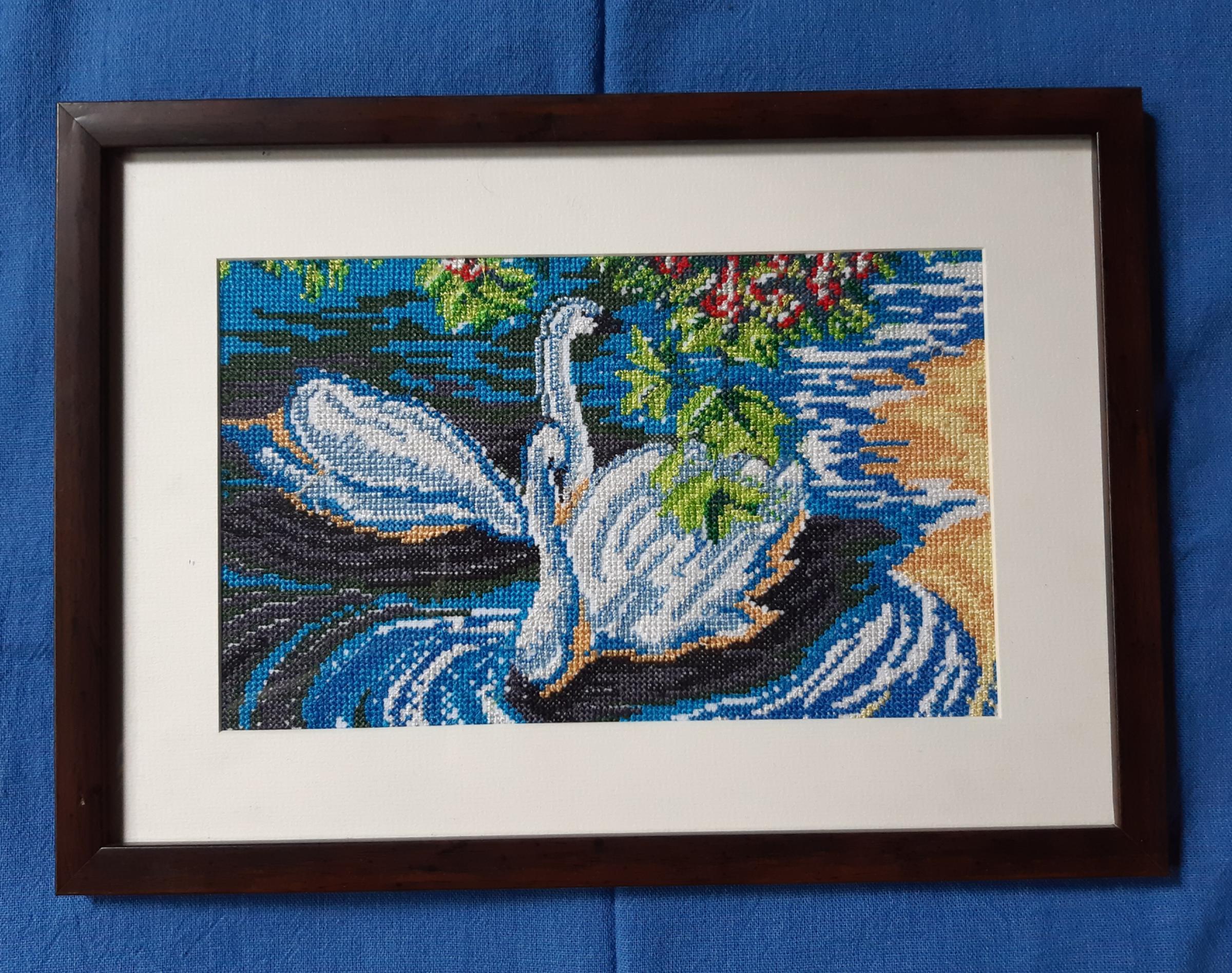 swan frame.jpg